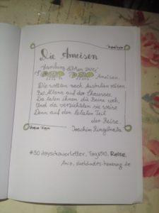 Tag 10. Reise (Ringelnatz-Gedicht mit den zwei Ameisen). Zeichnung und Foto: Ania Groß